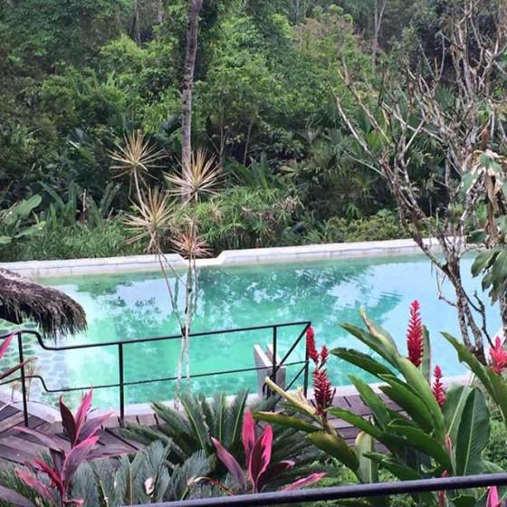 Ecolodge dans la jungle
