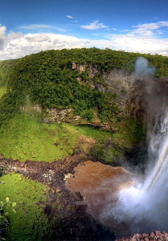 Amazionian Forest excursions Mono500 Ecuador