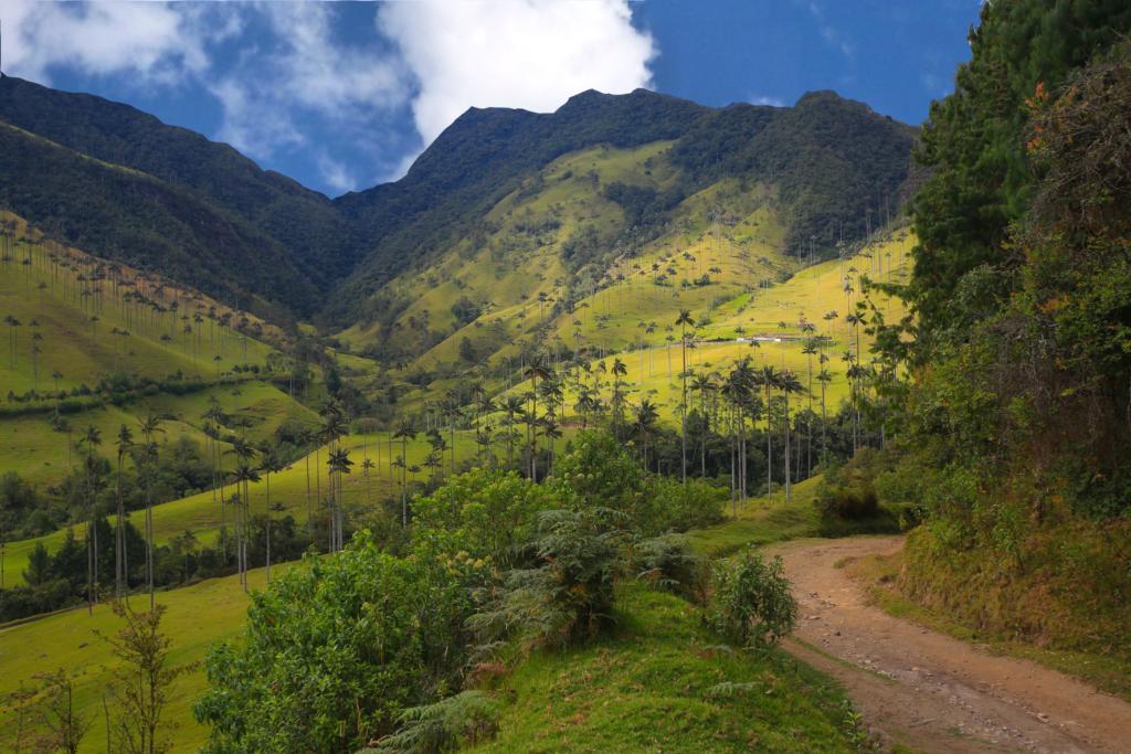 route de montagne Colombie