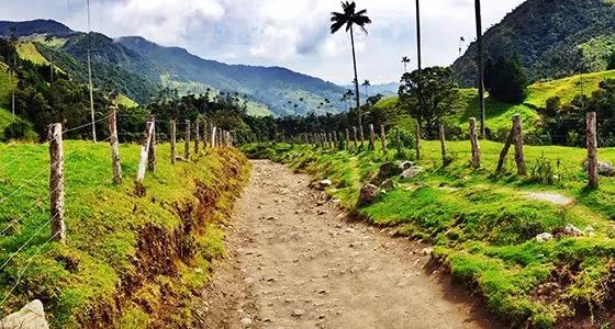 10 Bonnes raisons de découvrir la Colombie - Mono500