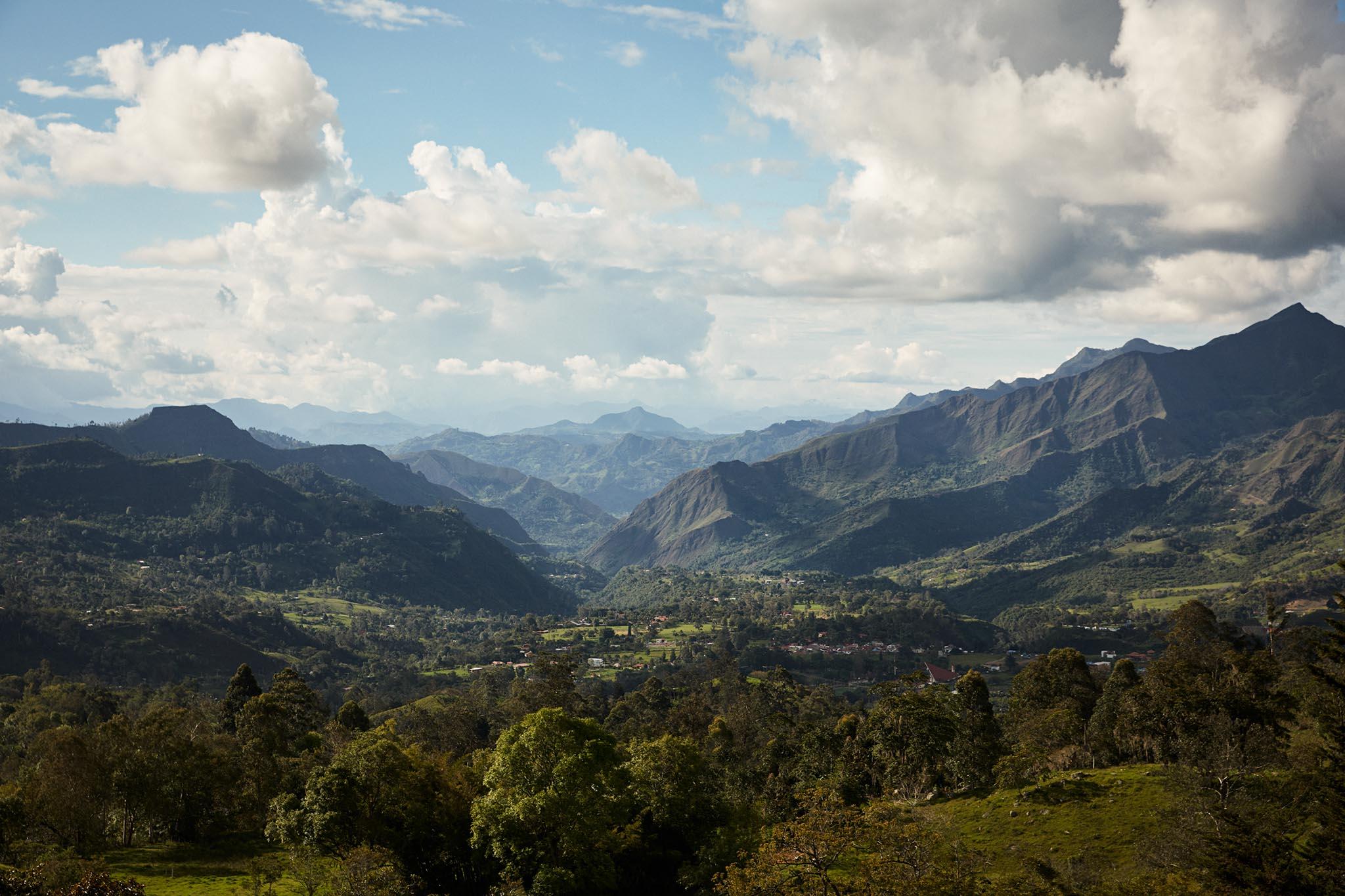 hauts plateaux de Bogota