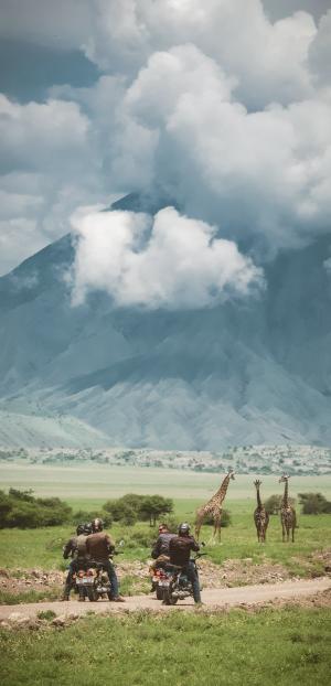Safari moto en Tanzanie
