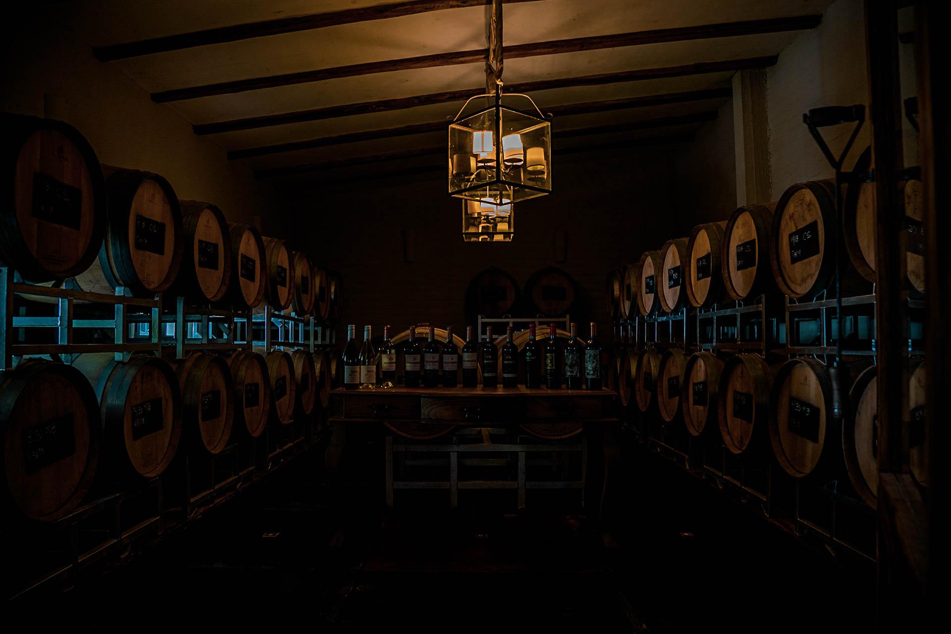 le vin argentin !